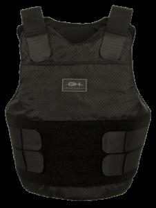 Low Profile Concealable Carrier (LPC)